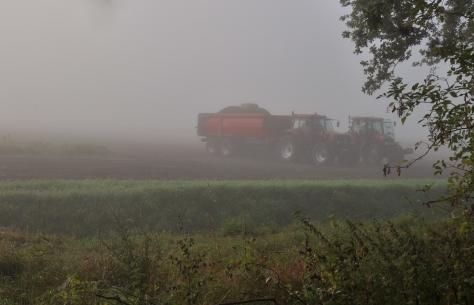 Foggy farming